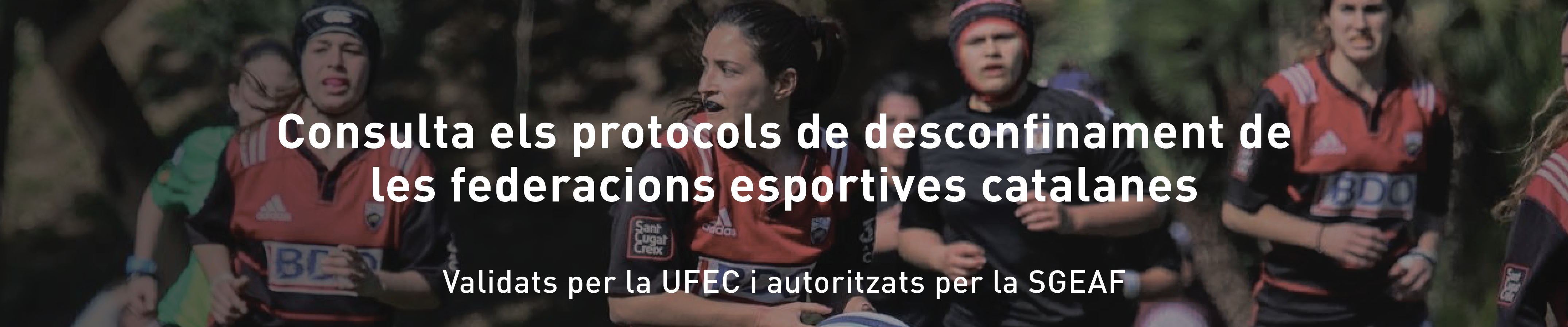 Protocols federacions desconfinament
